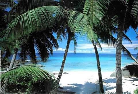 Fotos encadenades - Página 2 Hawaii
