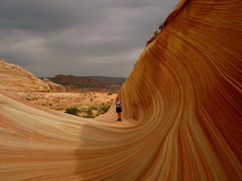 ola arizona La ola de Arizona