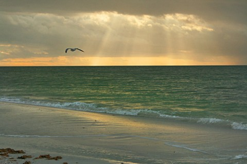 playa paridisiaca 36 Las mejores playas paradisíacas del mundo