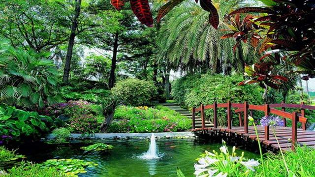 hoteles con jardines tropicales
