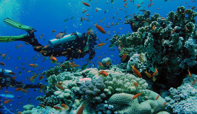 Firman Cuba y EEUU declaración sobre protección de medio ambiente