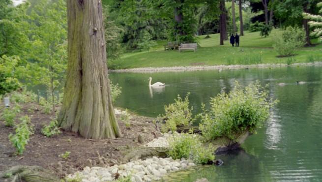 El Real Jardín Botánico de Kew, a las afueras de Londres