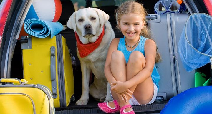 trucos viajar perros