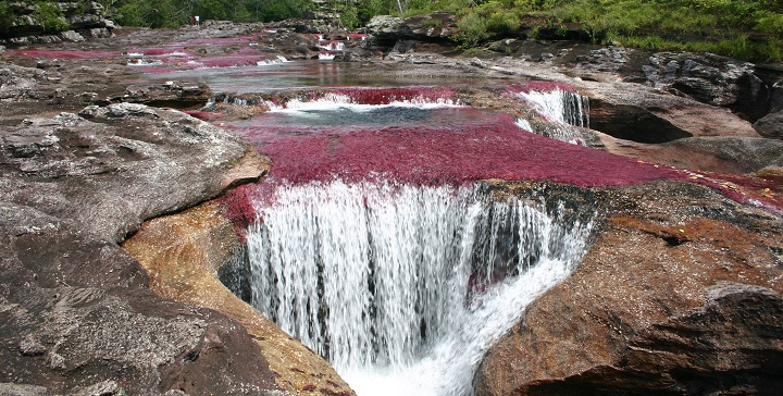 Rio Cano Cristales2