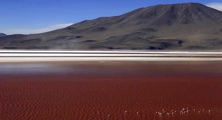Laguna Colorada1