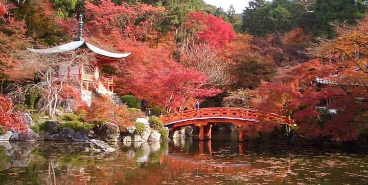Otono Japon