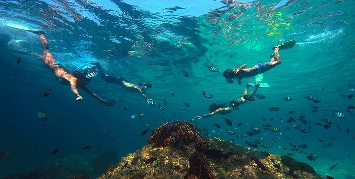 Snorkel en Tailandia1