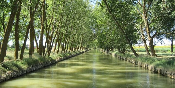 Canal Castilla1