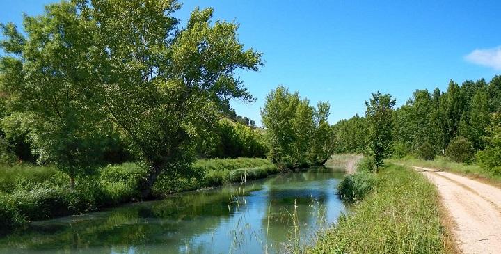 Canal Castilla3