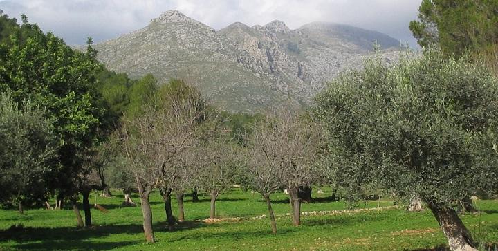 Sierra de la Demanda Burgos1