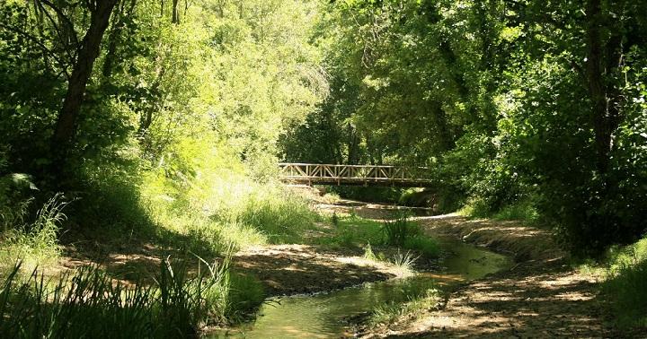 Parque Natural de los Alcornocales Cadiz
