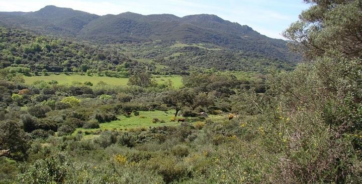 Parque Natural de los Alcornocales Cadiz4