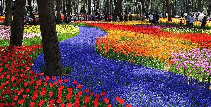 Parque Hitachi Japon2