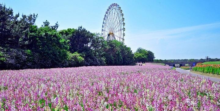 Parque Hitachi Japon4