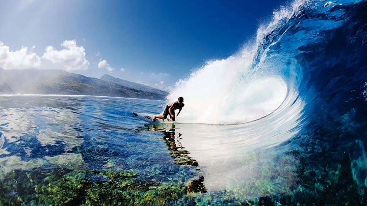 surf hawai