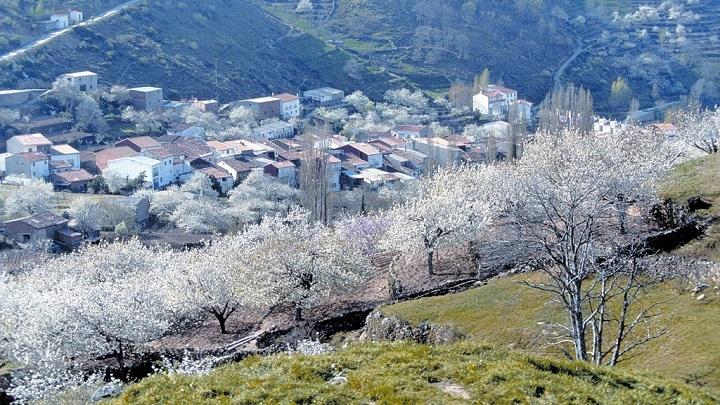 Valle del Jerte Extremadura3