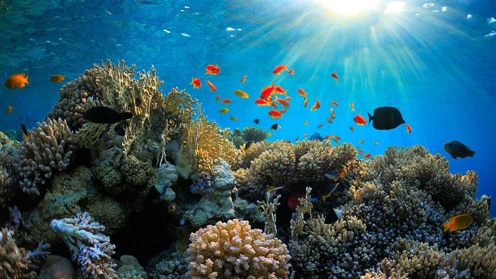 Islas Whitesunday1