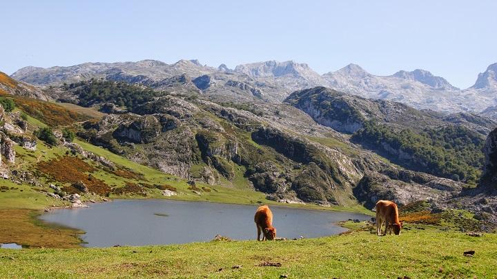 Lagos de Covadonga1