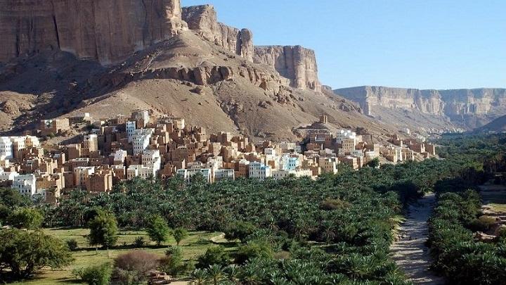 Socotra Yemen4
