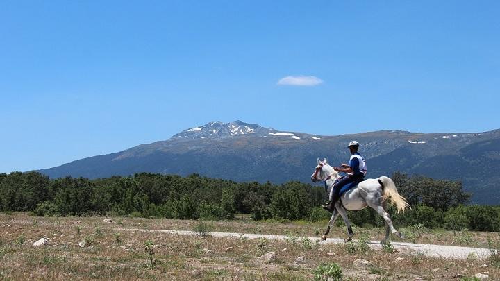 Parque Nacional Sierra de Guadarrama3