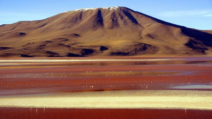 Laguna Colorada Bolivia1