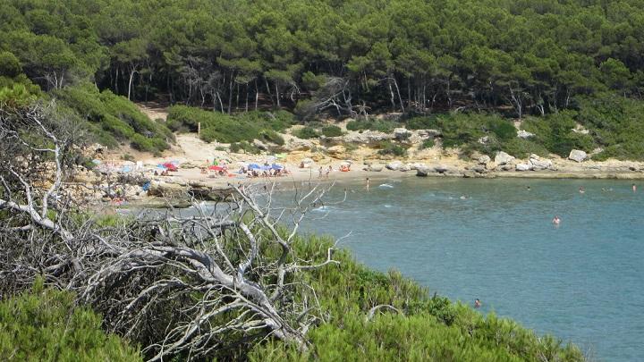 La Roca Plana1