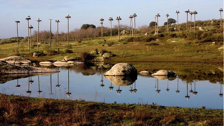 parque-natural-de-los-barruecos