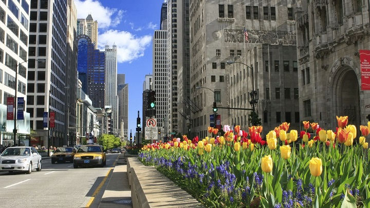Magnificent-Mile