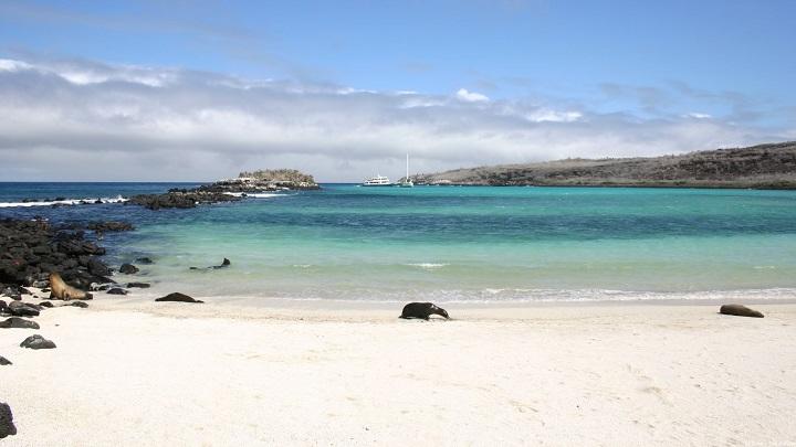 Galapagos-Beach-at-Tortuga-Bay