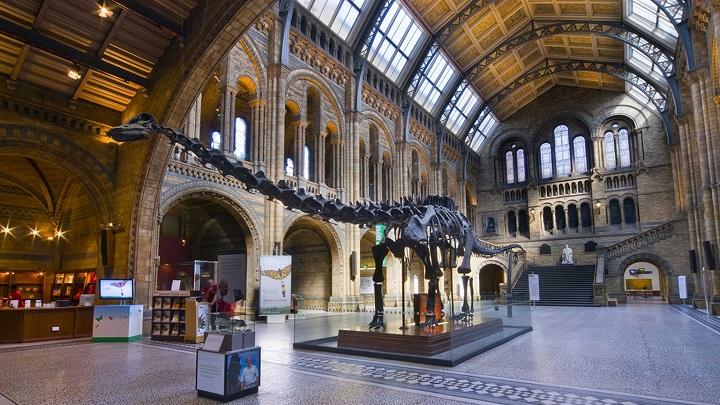 Museo-de-Historia-Natural