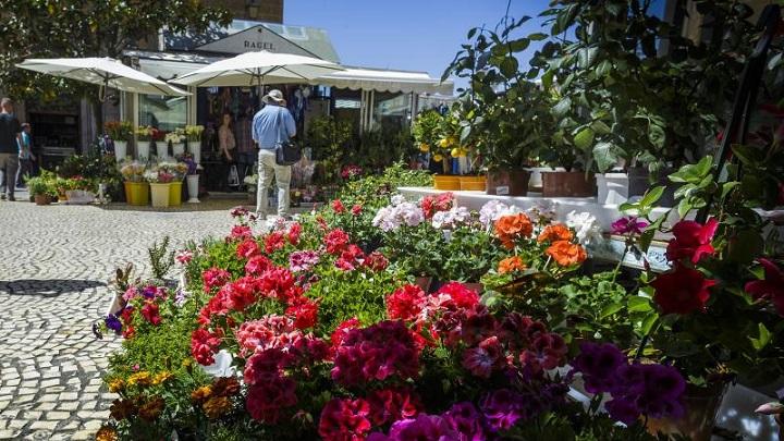 Plaza-de-las-Flores