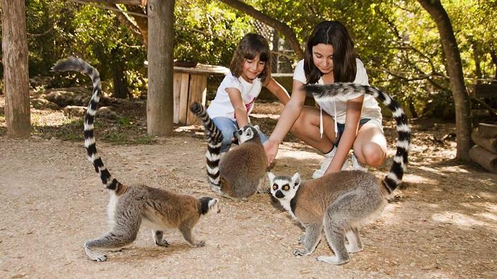 Zoo-de-Menorca