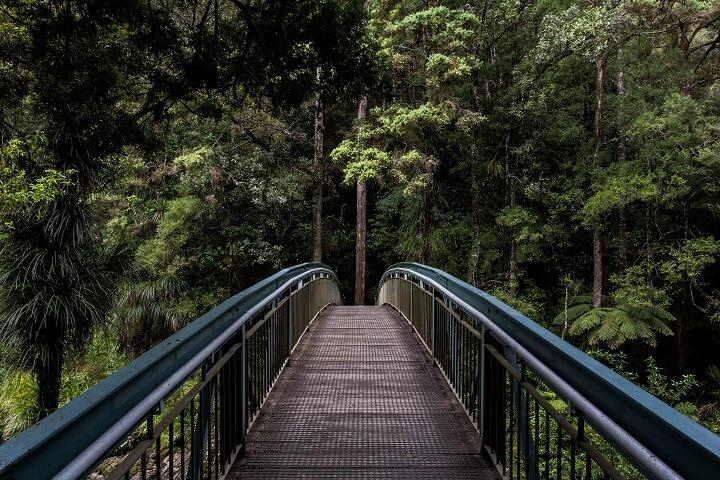 puente-en-plena-naturaleza
