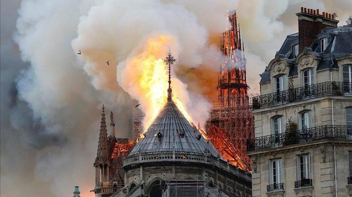 Notre-Dame-llamas