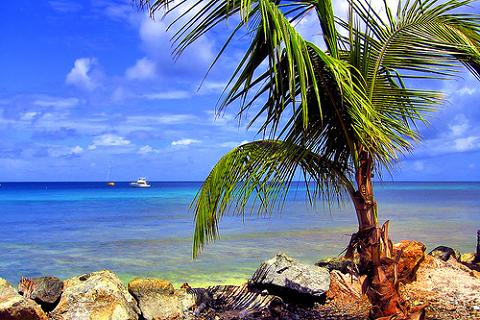 http://www.vuelaviajes.com/wp-content/trinidad-y-tobago-051.jpg